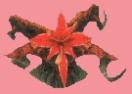 Plantocerebrum