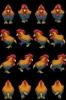 071-Bird01