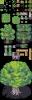 002-Woods01